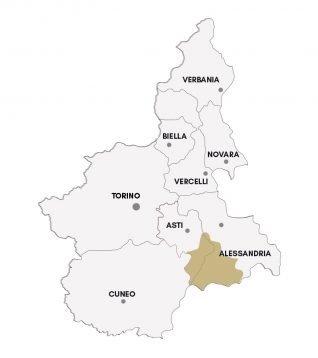 Cortese dell'Alto Monferrato DOC - Denominazioni Consorzio Barbera d'Asti e vini del Monferrato